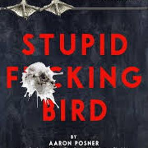 Stupid F#%*ing Bird